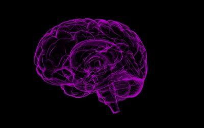 Identifican un compuesto que revierte en ratones los síntomas de demencia