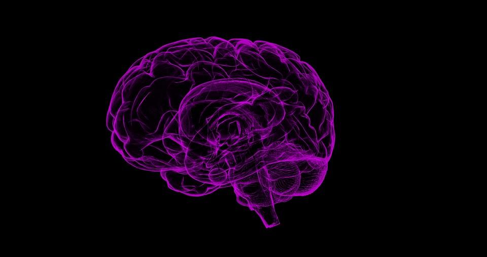 Otra 'fake news': Pfizer no ocultó un fármaco contra el alzhéimer