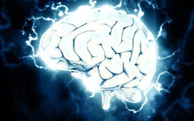 Descubren nuevas alteraciones en el cerebro por riesgo genético en alzhéimer